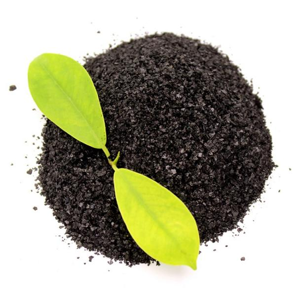 Seaweed Organic Manure Highly Concentrated Liquid Fertilizer #2 image
